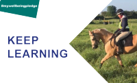An image accompanying the 'keep learning' element of the 5 ways campaign